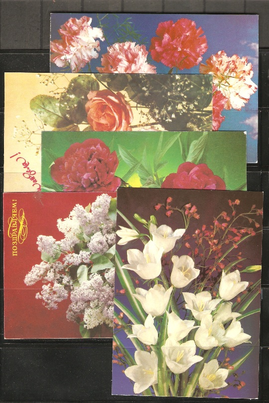 Lot#266: 5 FLOWERS POST CARDS (Prox. Oferta Mínima: 3.25)